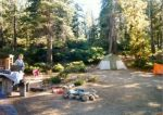 Our campsite at Eagle Point.