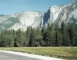 Yosemite Falls from the roadway in the valley.