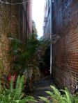 Just an alley somewhere along my walk through the French Quarter.