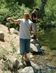 We found some trout in Lower Lee Vining Creek, near the powerhouse.