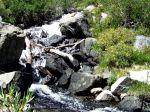 Rock Creek along the trail.