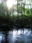 Morning on Moccasin Creek