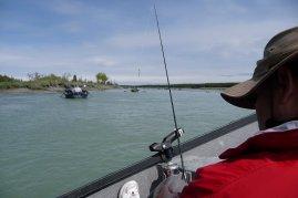 Watching the rod on the Kasilof.