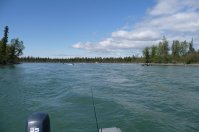 The Kenai River.