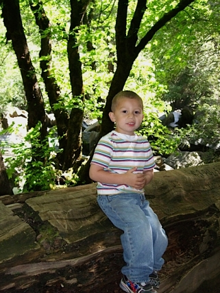 Alex resting in the woods.