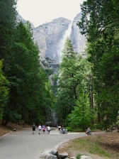 The walk to Yosemite Falls.