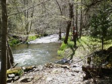 Looking upstream from the bridge over Stream X.