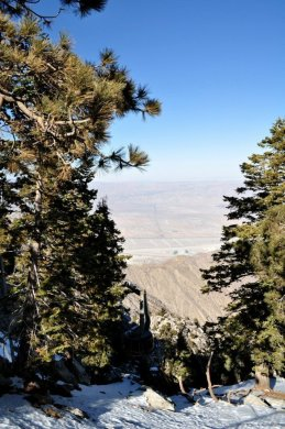 Look down on the route of the Palm Springs Aerial Tram.