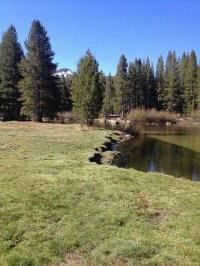 The Tuolumne River, with Sean in the far background.