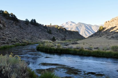 Early morning on Hot Creek, looking west to the Sierras.