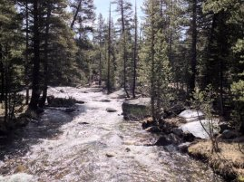The Dana Fork of the Tuolumne River, I believe.
