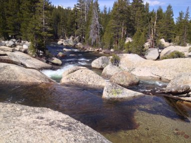 Crossing the Lyell Fork.