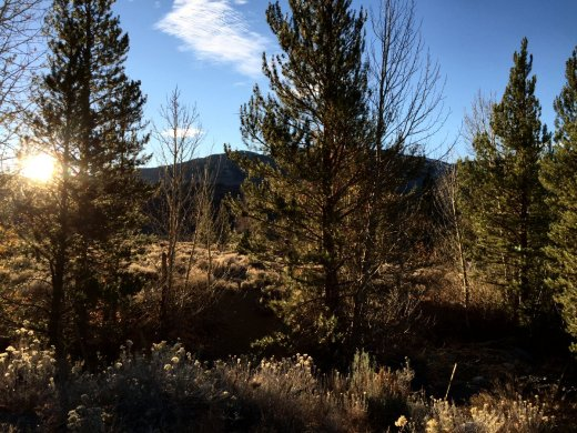 Sun appears over the West Walker River.