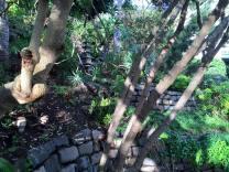 2016.01.30.San Francisco Stairs.04 Garden